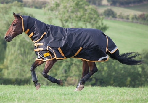7shires-stormbreaker-combo-turnout-rug-2015-blackgold-6ft-3in