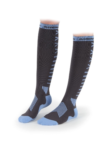 shires-aubrion-springer-compression-socks-grey