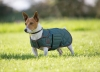shires-digby-fox-quilted-dog-coat-dark-green-x-small