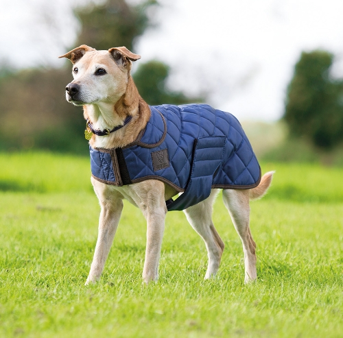 shires-digby-fox-quilted-dog-coat-navy