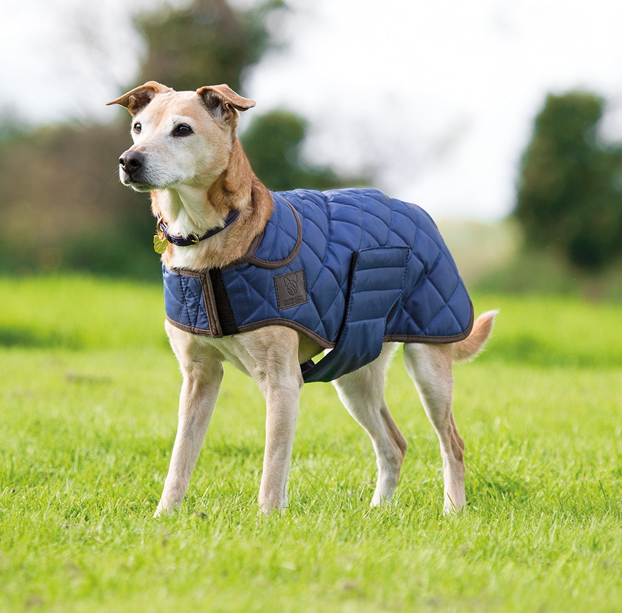 shires-digby-fox-quilted-dog-coat-navy-x-small