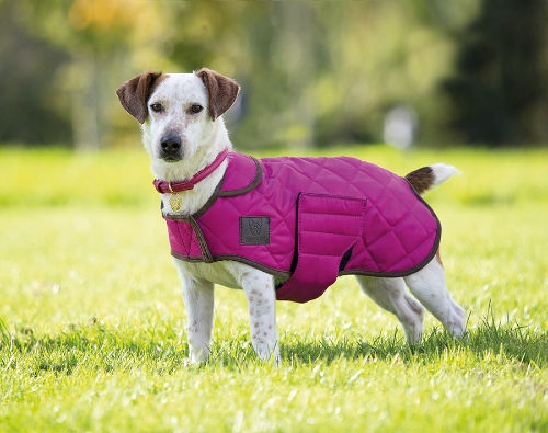 shires-digby-fox-quilted-dog-coat-raspberry-x-small