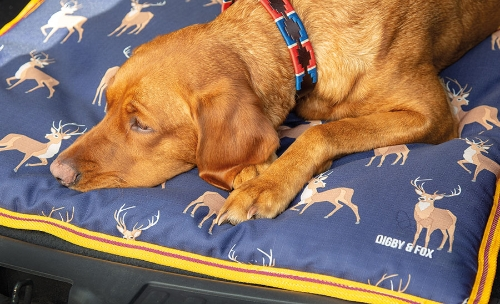 shires-digby-fox-waterproof-dog-bed-stag-print