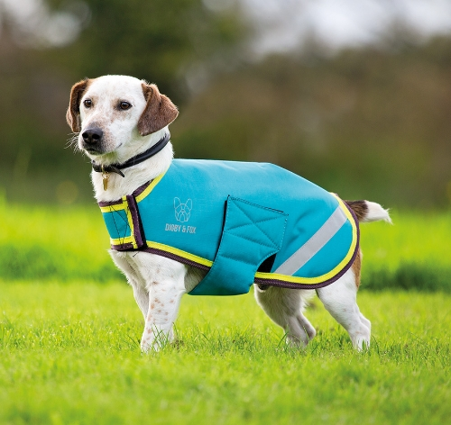 shires-digby-fox-waterproof-dog-coat-aqualime-medium