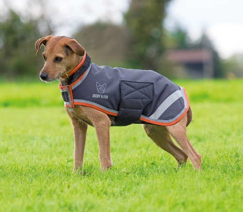 shires-digby-fox-waterproof-dog-coat-blackorange-xx-small