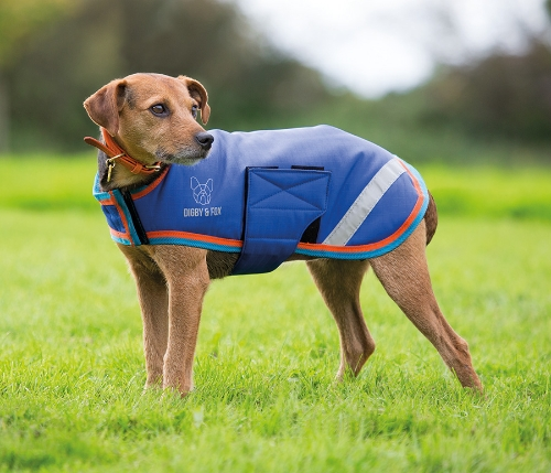 shires-digby-fox-waterproof-dog-coat-blueorange-small