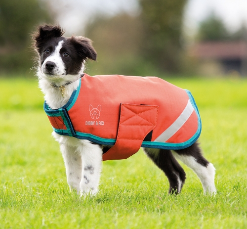 shires-digby-fox-waterproof-dog-coat-orangeaqua-xx-large