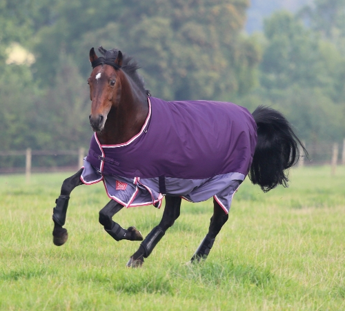 shires-highlander-original-300-turnout-rug-2015-purple-two-tone-5ft-9in