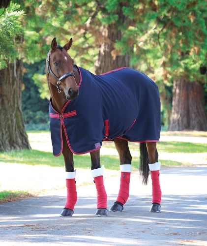 shires-jersey-cooler-rug-navyred