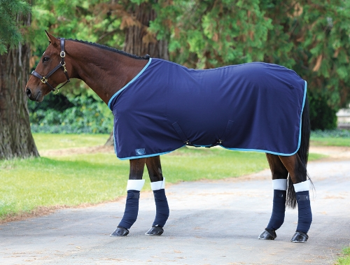 shires-premium-stablesummer-sheet-navyblue-5ft-6in