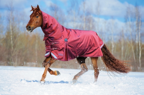 shires-stormcheeta-combo-turnout-rug-poppy-red