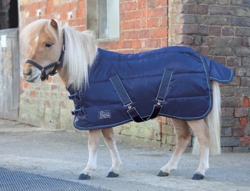 shires-tempest-mini-200-stable-rug-2015-39