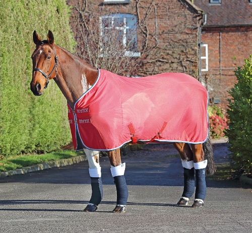 shires-tempest-original-fleece-mesh-cooler-rug-red