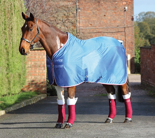 shires-tempest-original-fleece-mesh-cooler-rug-royal-blue