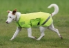 shires-tempest-waterproof-dog-coat-bright-yellow-large
