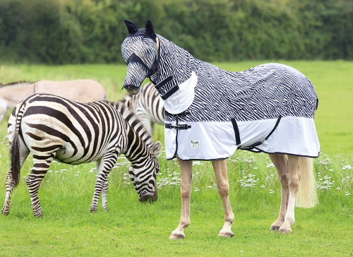 shires-tempest-zebra-fly-rug-combo-6ft-0in