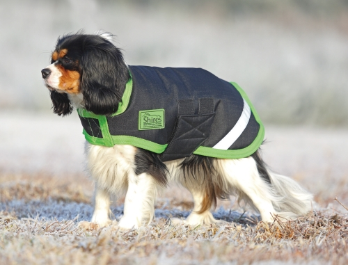 shires-waterproof-dog-coat-blackbright-green-large