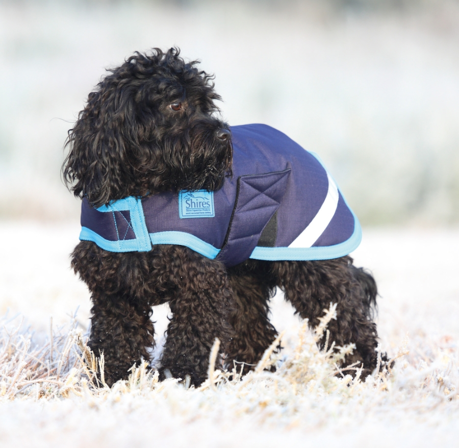 shires-waterproof-dog-coat-navybright-blue-large